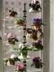 Подставка для цветов Пава