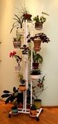 Подставка для цветов Трио